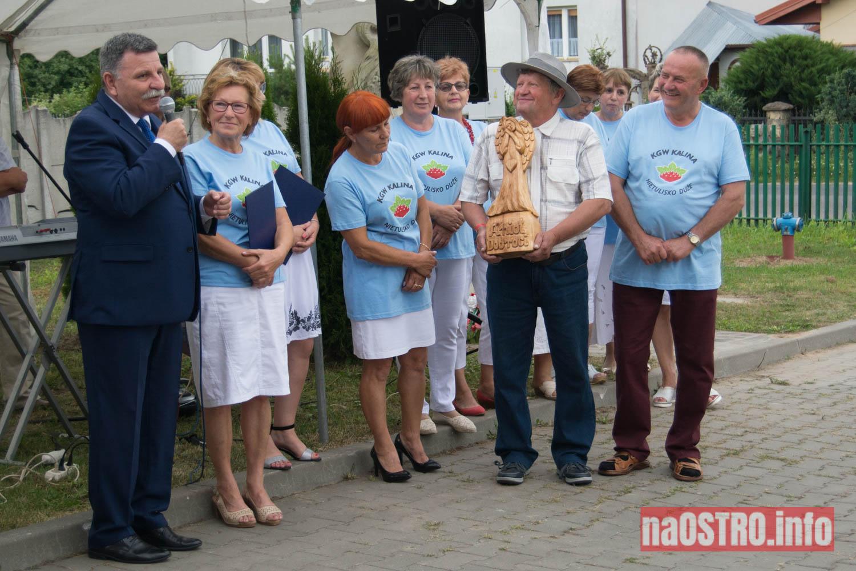 NaOSTRO Imieniy Kaliny-42
