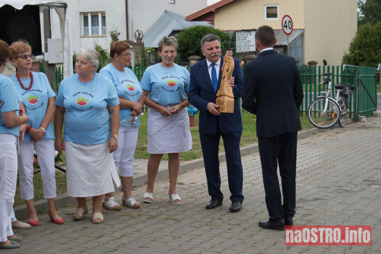NaOSTRO Imieniy Kaliny-44