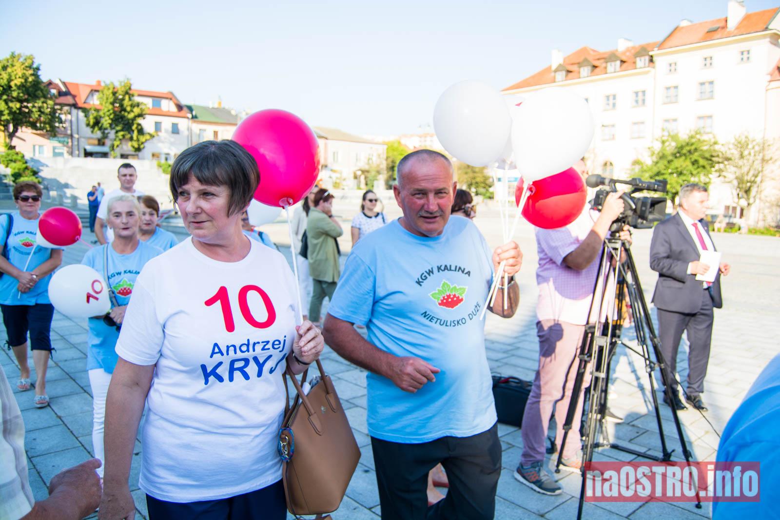 NaOSTRO Andrzej Kryj kampania-2