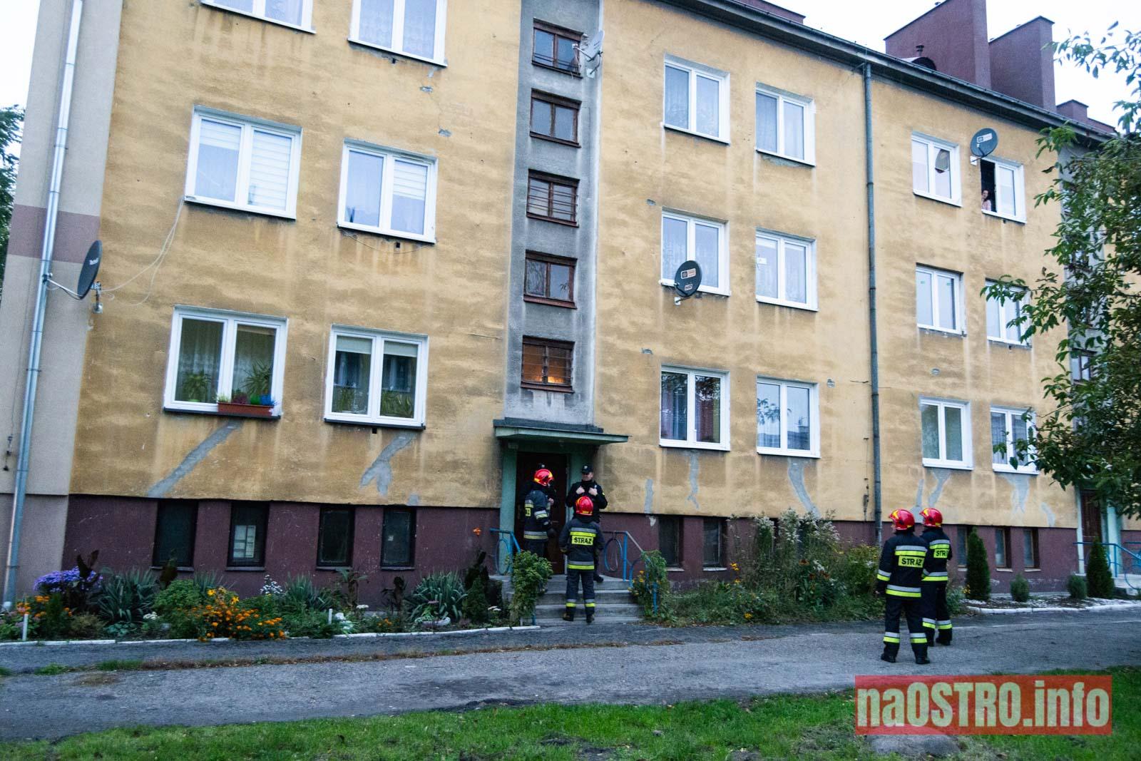 NaOSTRO bomba kościuszki 9 -1