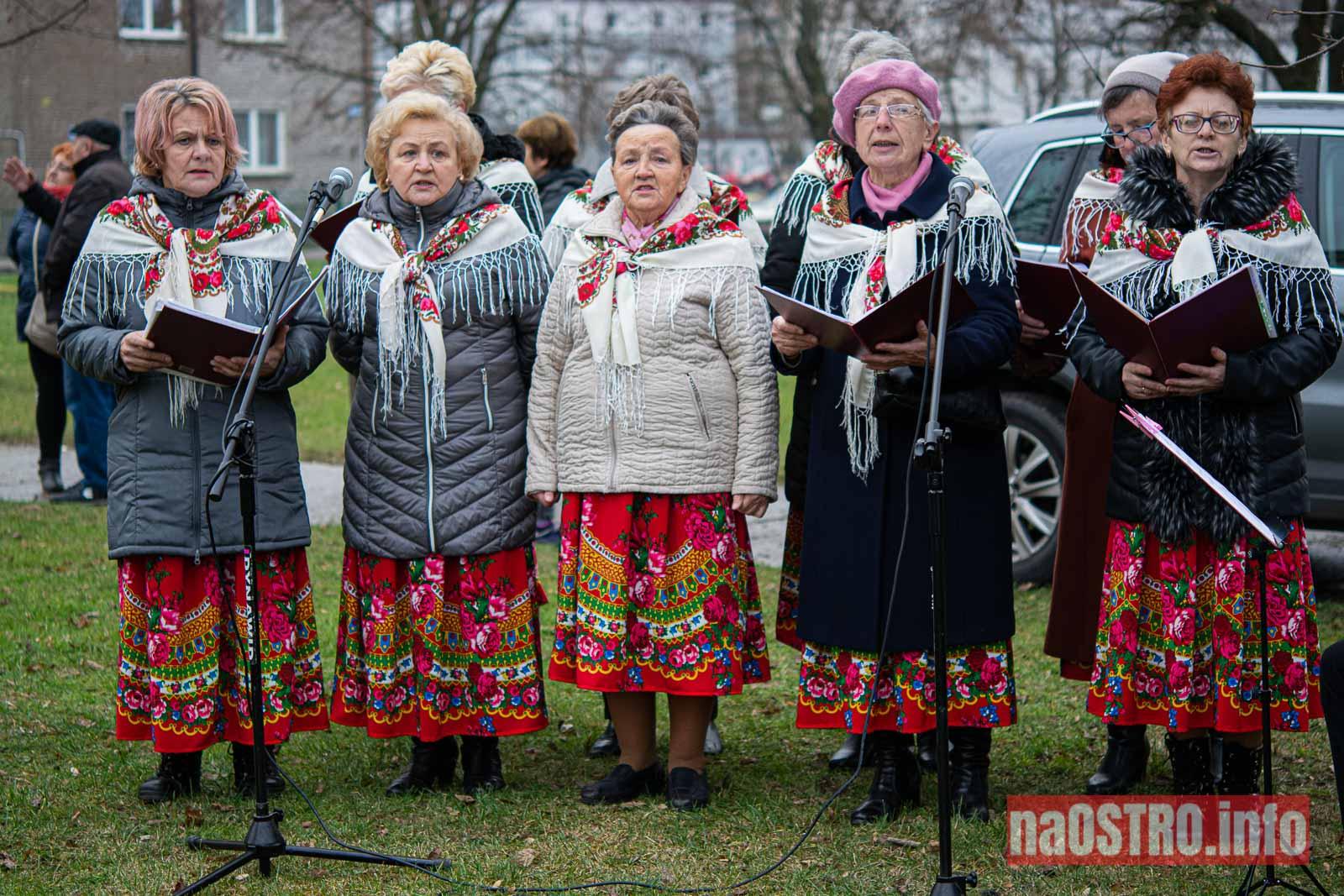 NaOSTRO Choinka Ogrody ubrana-15