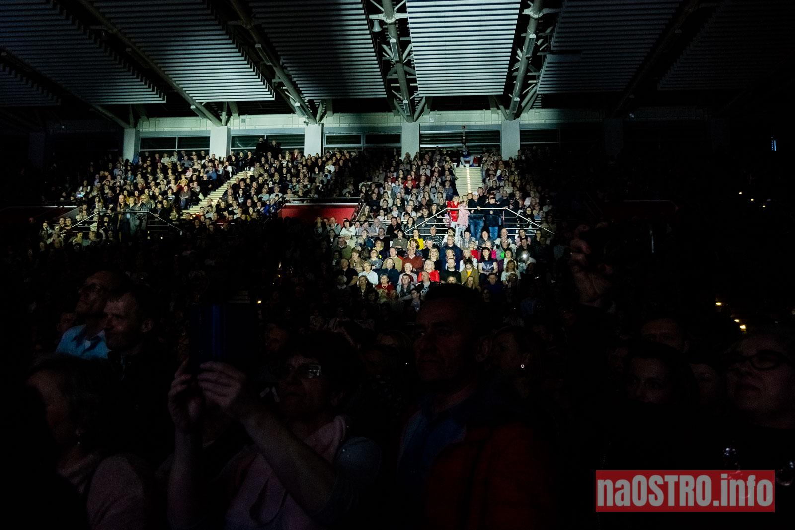 NaOSTRO wilki koncert-64