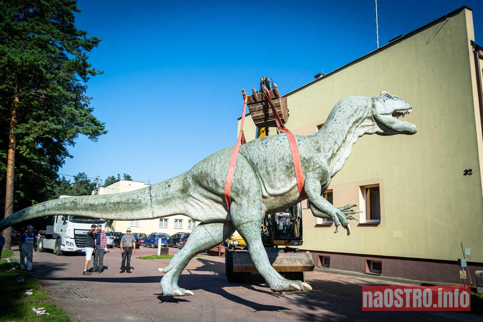 NaOSTROinfo Dinozaur Gerard-16
