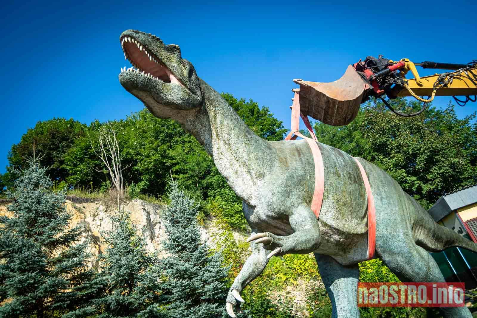 NaOSTROinfo Dinozaur Gerard-27