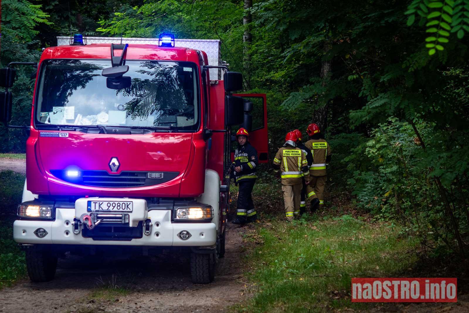 NaOSTROinfo Ćwiczenia Straży Pożarnej-31