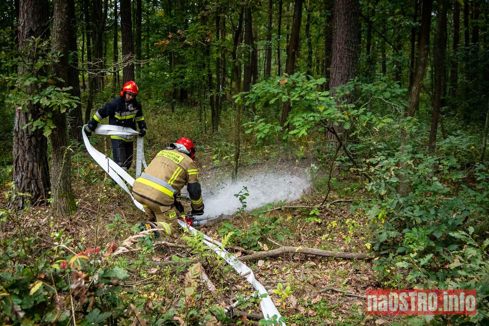 NaOSTROinfo Ćwiczenia Straży Pożarnej-8